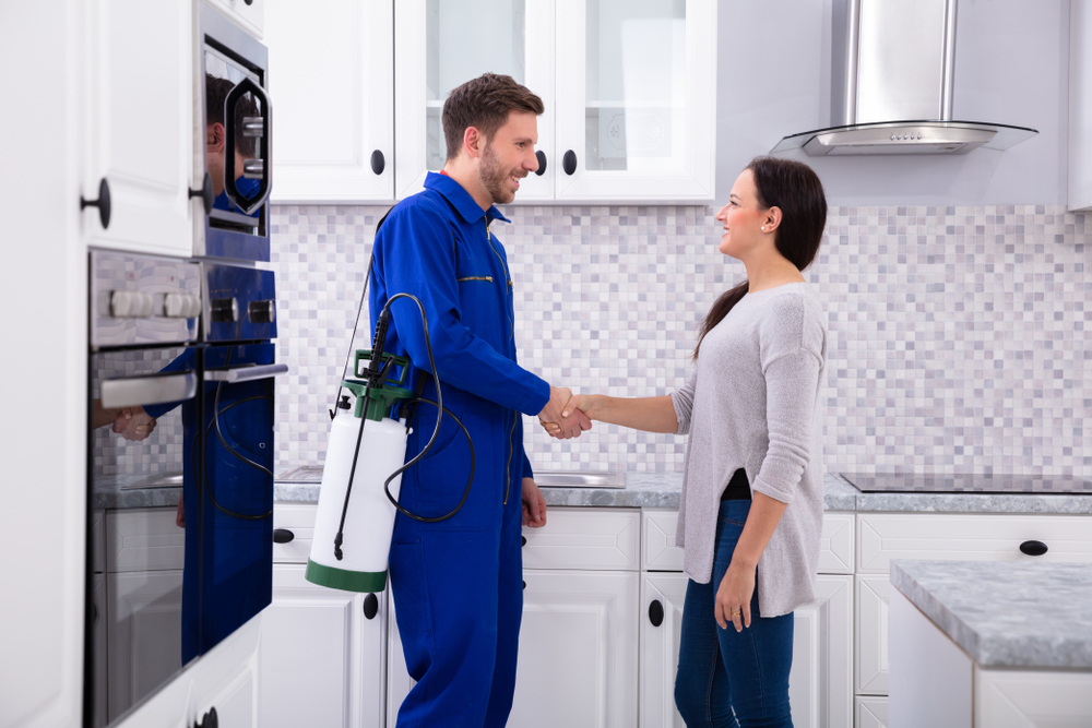 Things to do before pest control