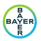 Bayer 1