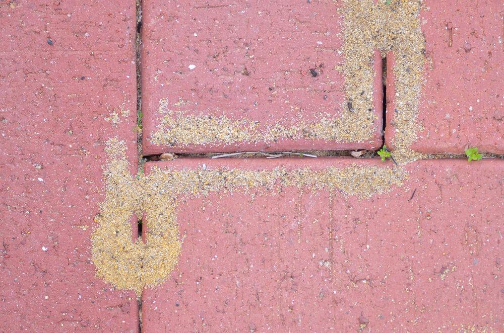 Damaged Red Brick Pavement