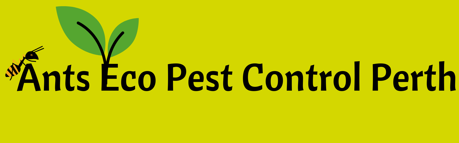 Ants Eco Pest Control Perth